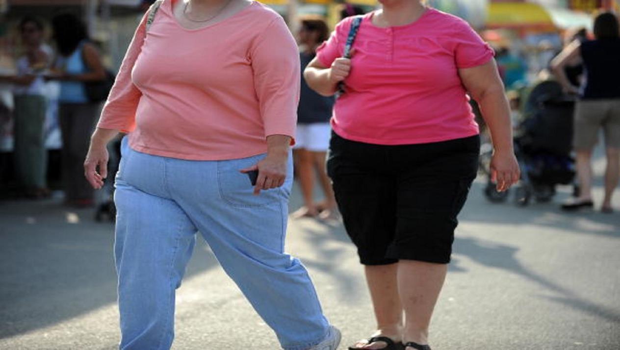 Quels sont les facteurs de risque de l'obésité ?